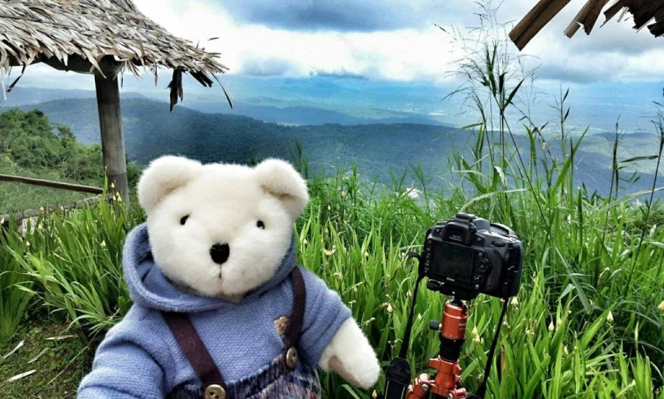 Teddy House Photo Contest Selfie Time